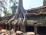 柬埔寨深度自由行,全方面攻略